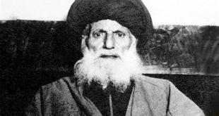 سید محسن امین