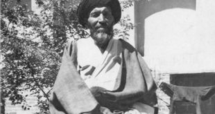 انتشار کتاب «فقیه آزاده»؛ زندگینامه آيتالله سیدهاشم میردامادی