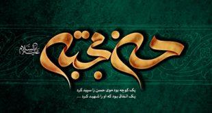 امام حسن(ع)؛ دیدگاهها و نظرها