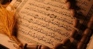 دنیاگرایی و دنیا گریزی در قرآن کریم/ علی شریفی