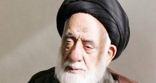 دغدغهها و هشدارهای سید مهدی طباطبایی/ حبیبالله عباسی
