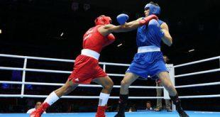 ورزشهای حرفهای شرعا مجاز نیست!/ حسین قمی