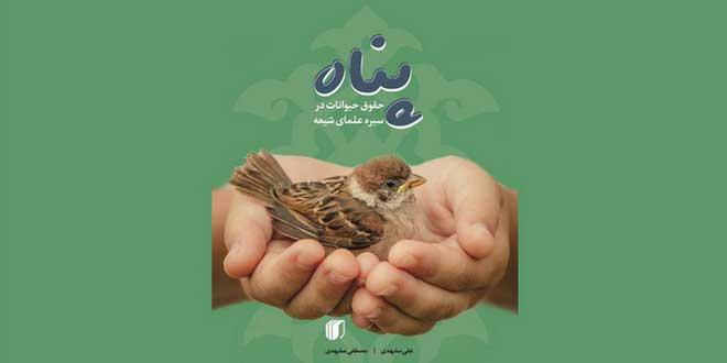 «پناه»، حقوق حیوانات در سیره علمای شیعه