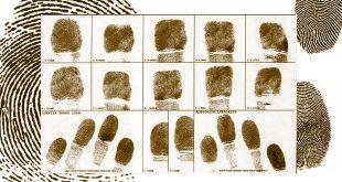 تحلیل جرم سازمانیافته از دریچه فقه