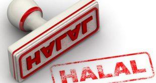 انتشار ویژهنامه «صنعت حلال» از سوی نمایندگی ولی فقیه در جهاد کشاورزی
