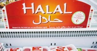برند جهانی غذای حلال باید ویژه و مختص قم باشد