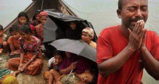 آمادگی مجمع جهانی تقریب برای میانجیگری میان دولت و مسلمانان میانمار