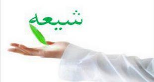 تشيع، اهل سنت نبوی/ محمد جاودان
